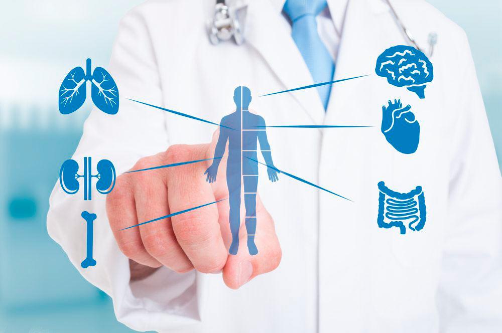 Medicina Interna - Dr. Everardo Fernández Rangel