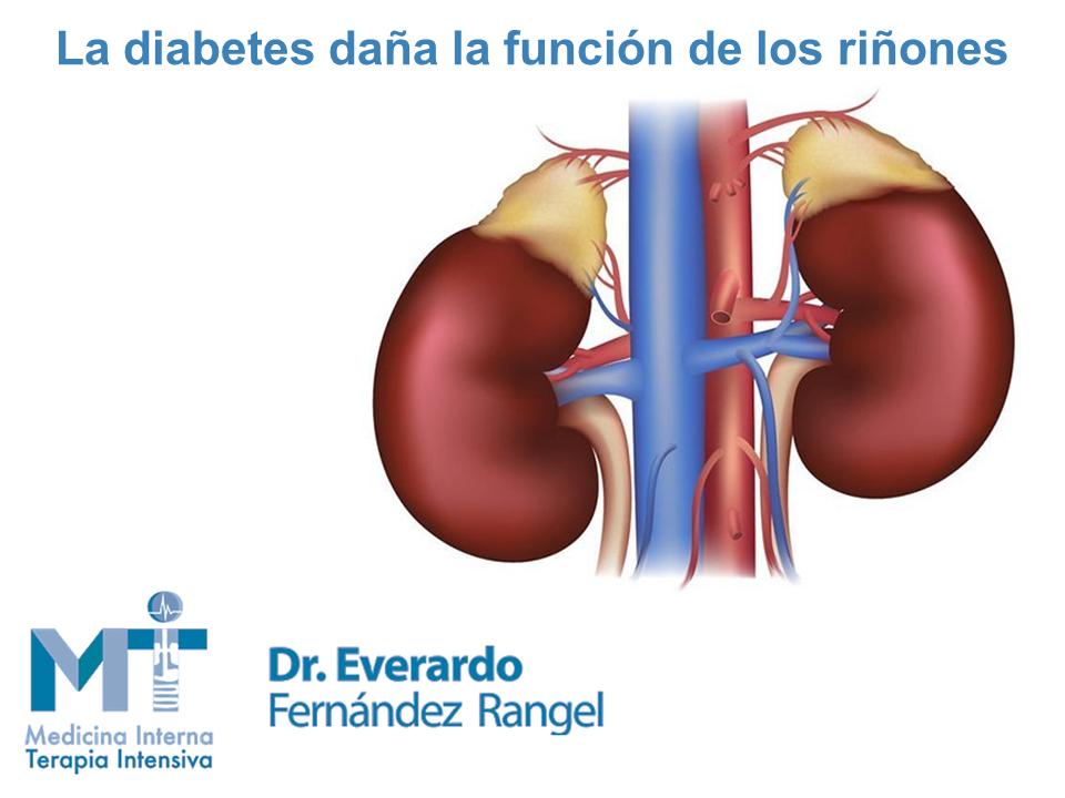 Como afecta la diabetes a los riñones
