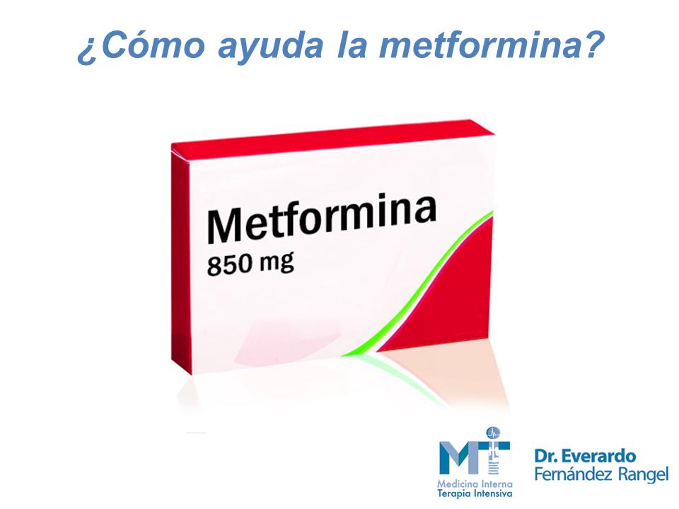 ¿Qué es y qué hace la metformina? Parte 1